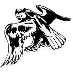 Predatory Bird Sticker 50