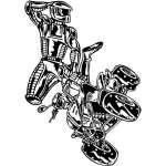 ATV Riders Sticker 81
