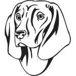 Bavarian Mountain Hound Dog Sticker