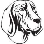 Bluetick Coonhound Dog Sticker