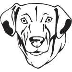 Catahoula Cur Dog Sticker
