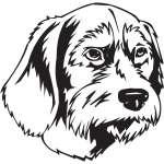 Pudelpointer Dog Sticker
