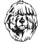 Puli Dog Sticker