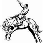 Bronco Riding 1 Sticker