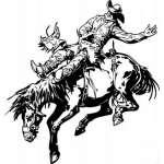Bronco Riding 11 Sticker