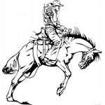 Bronco Riding 3 Sticker