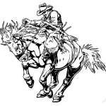 Bronco Riding 4 Sticker