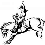 Bronco Riding 5 Sticker