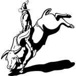 Bull Riding 18 Sticker