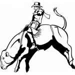 Bull Riding 4 Sticker