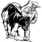 Steer Wrestling 3 Sticker