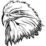 Eagle 19 Sticker
