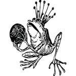 Frog Sticker 52